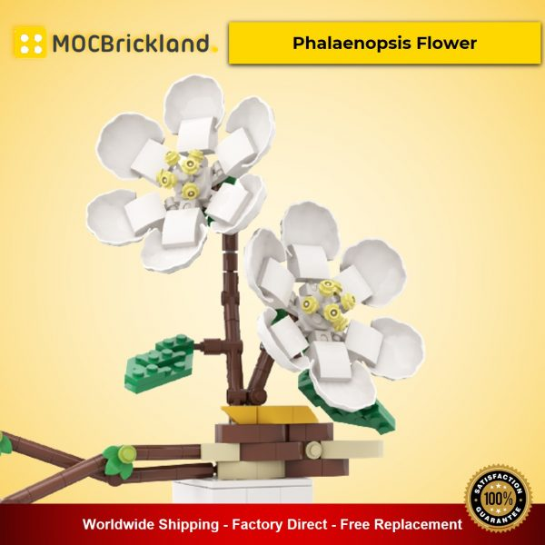 Phalaenopsis Flower MOC-90095 Creator With 331 Pieces
